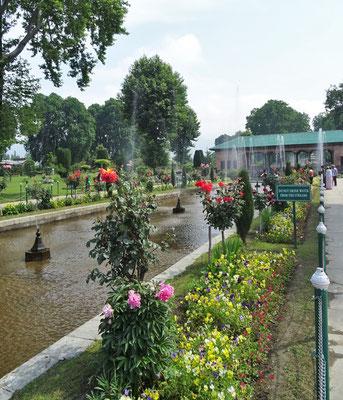 Der 400 jährige Mughal Garden....