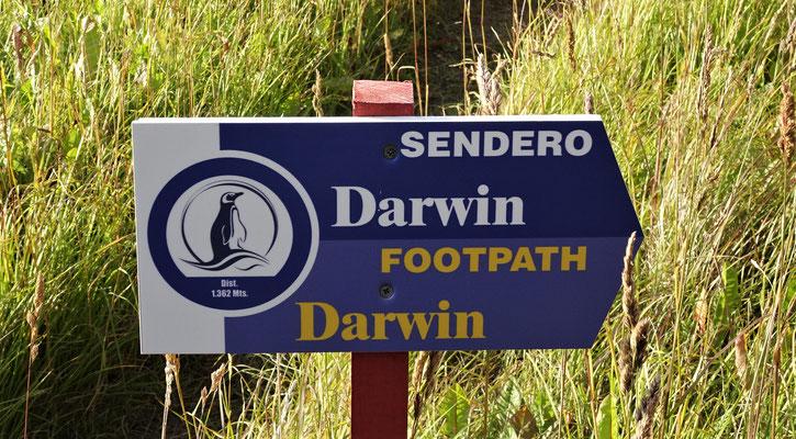 Der Darwin Weg.....