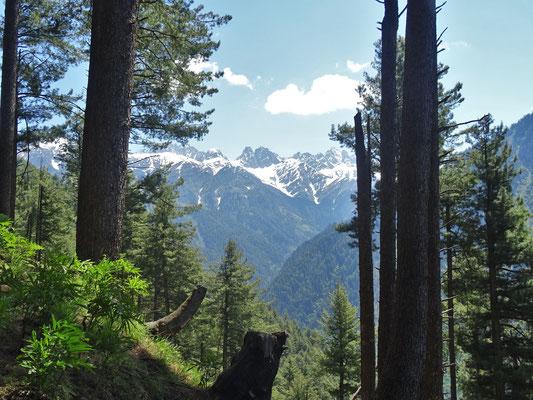 Wunderbare Aussicht in die Berge...