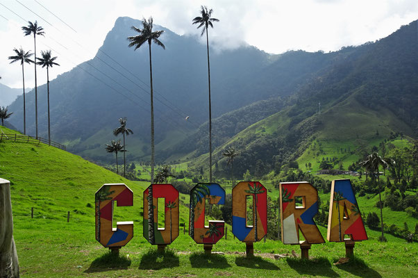 Ausflug ins Cocora Tal.....
