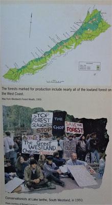 Die Rebellion gegen die Waldzerstörung.