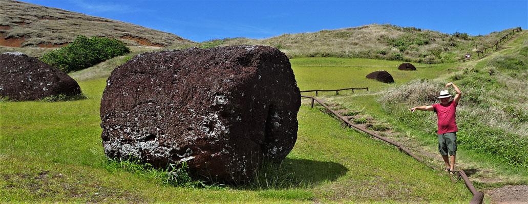 .....für die Hüte der Moai.
