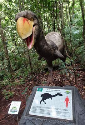Sie lebten vor 18 Mio. Jahren.