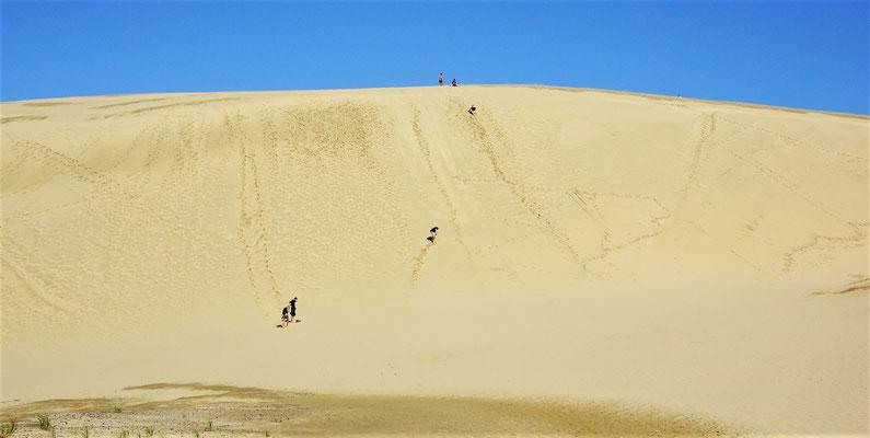 Die Te Paki Sand Dünen.....