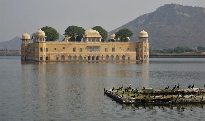 Der Sommerpalast (Jal Mahal)