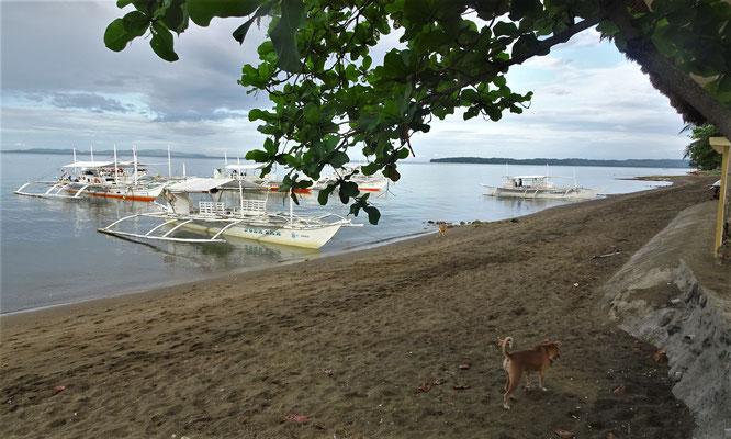 Der Strand vor unserem Hotel.