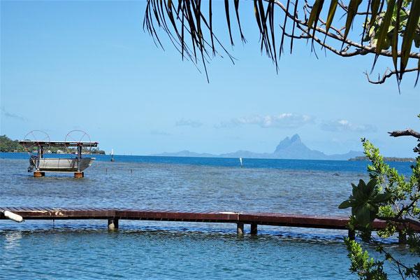 ....dem Blick auf Bora Bora.