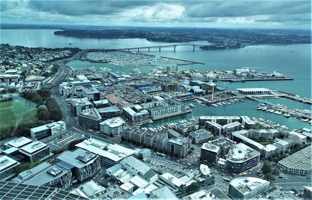 ....auf Auckland.