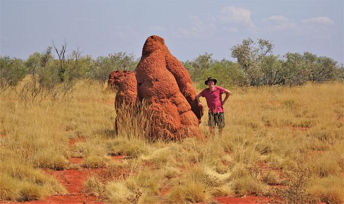 Ein riesiger Termitenhügel.