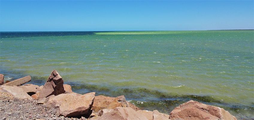Der Blick aufs Meer in Whyalla.....