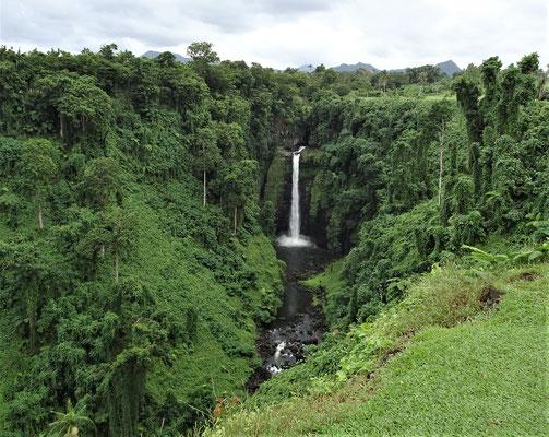 Der 100m hohe Papapapai-Uta Wasserfall. (Kein Schreibfehler)