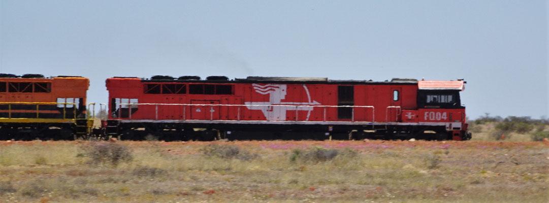 ....mit einem Güterzug auf der Ghan Strecke.