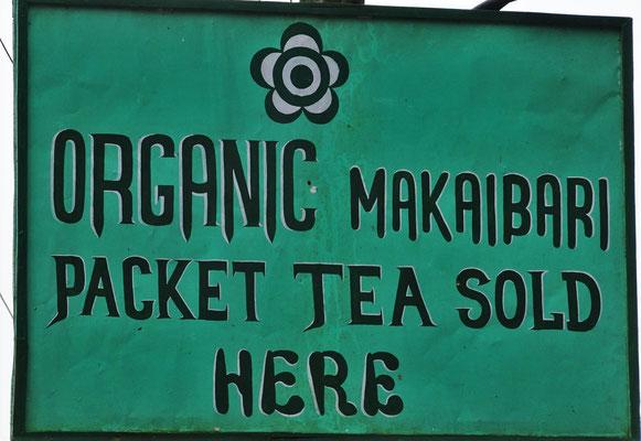 Die weltberühmte Makaibari Tee Plantage....