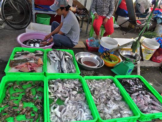 Die Fischauswahl....