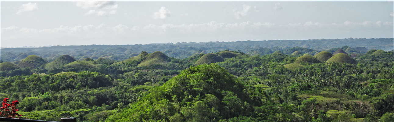 ......der Chocolate Hills.....