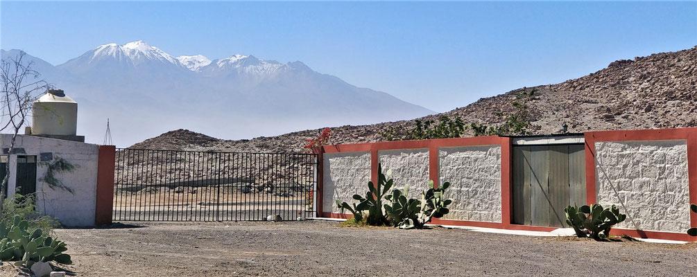 ....und der Vulkan Misti mit den Schneebergen Chachani.