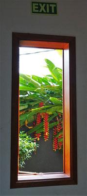 ...spezielle Notausgang durch ein schmales Fenster.