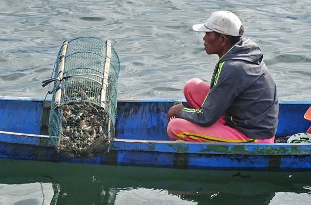 Hier werden kleine Lobster gefischt....