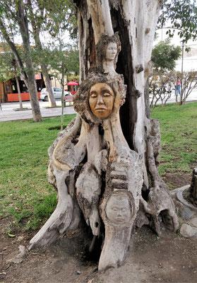.....einem toten Baum.