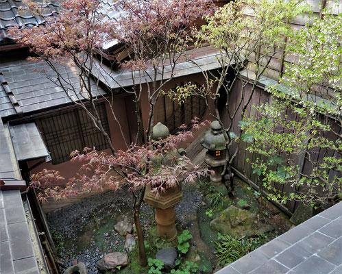Der kleine Garten.