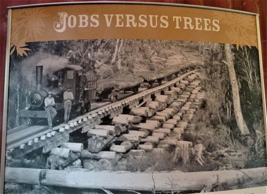 Jobs gegen Wald.