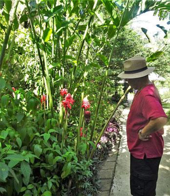 Ein schöner Garten.....