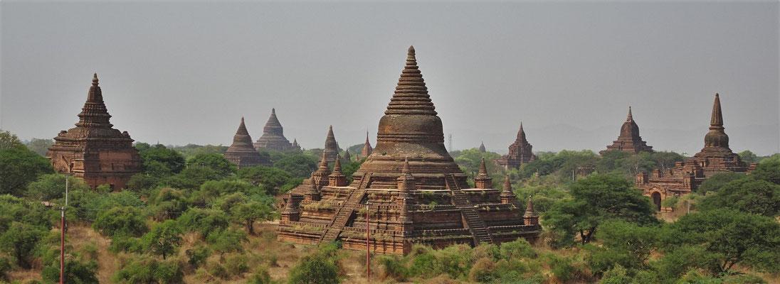 Der Blick auf einige der 2'000 Stupas.