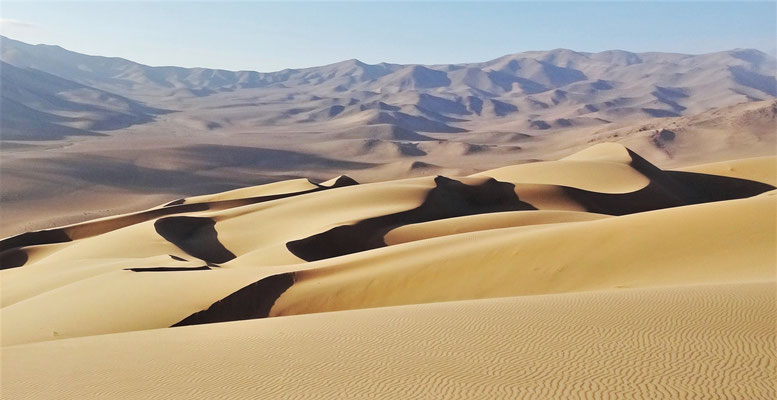 .....in dieser Dünen Landschaft.