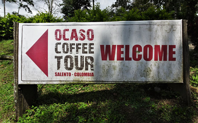 ......zur Ocaso Kaffee Plantage.