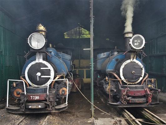...Dampfloks der Schmalspurbahn (61cm Spurbreite)
