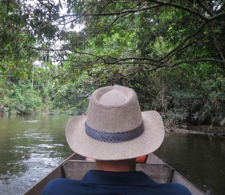 ...durch den Dschungel....