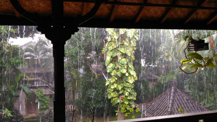 Ein fast tägliches Gewitter.