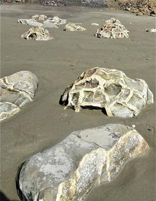 ......stiessen wir auf diese zerbrochenen Steine.....