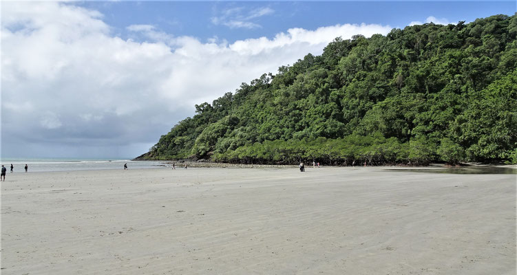 Der Sandstrand von Cape Tribulation......