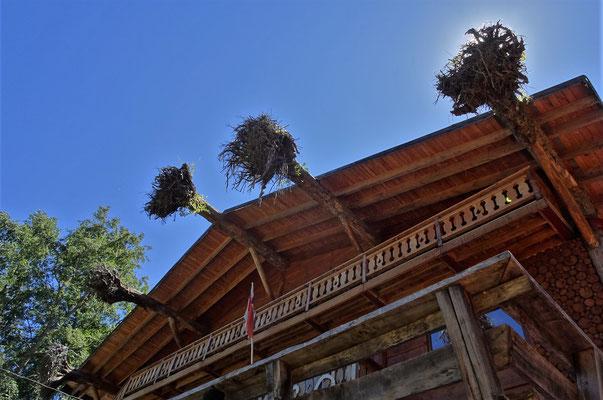 ....mit den eigenwilligen Dachbalken.