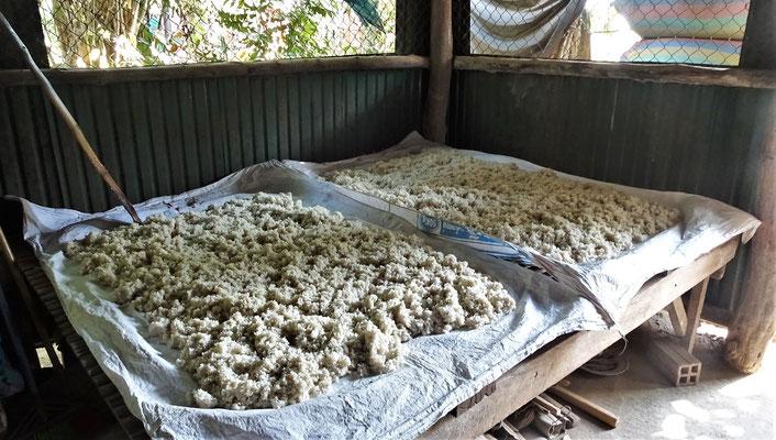 Hier wird der Reis vorbereitet.