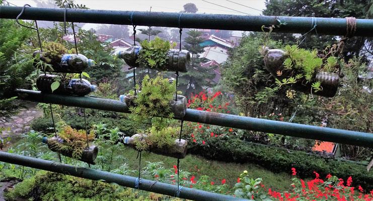 ...Garten mit den PET-Pflanzentöpfen.