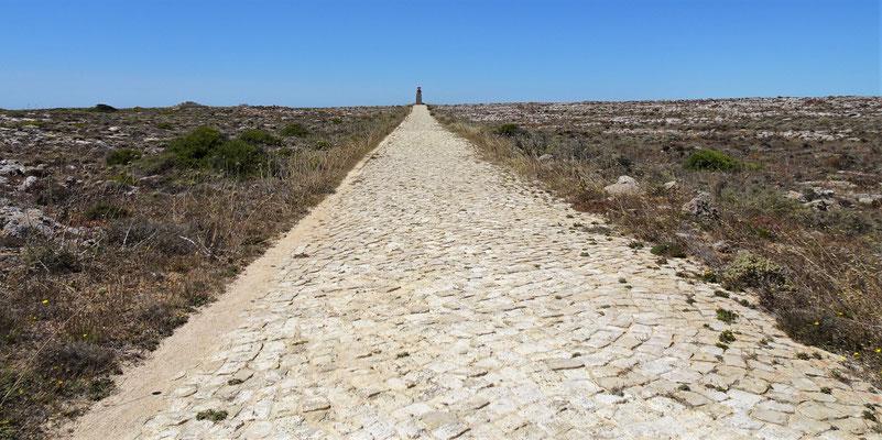 Der Weg zum Leuchtturm.
