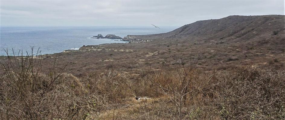 Die Aussicht in die Bucht.