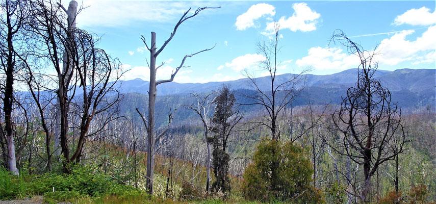 ......und der schönen Aussicht in die Berge.