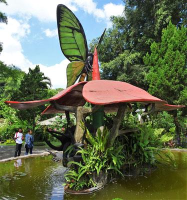 Der Schmetterlings Garten...