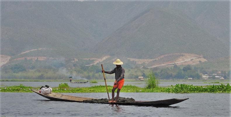 ....aus dem See gefischt...