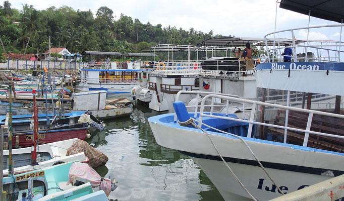 Der Hafen von Mirissa.