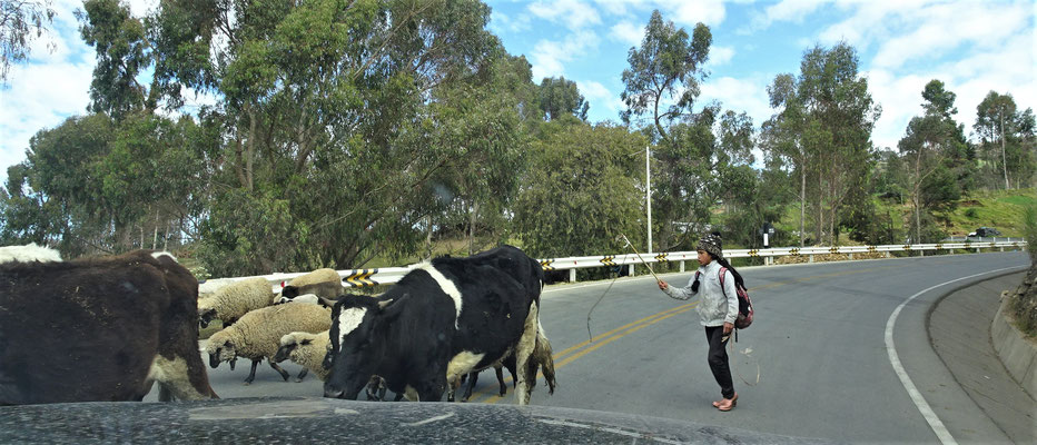 .....mit anderen Verkehrsteilnehmer.