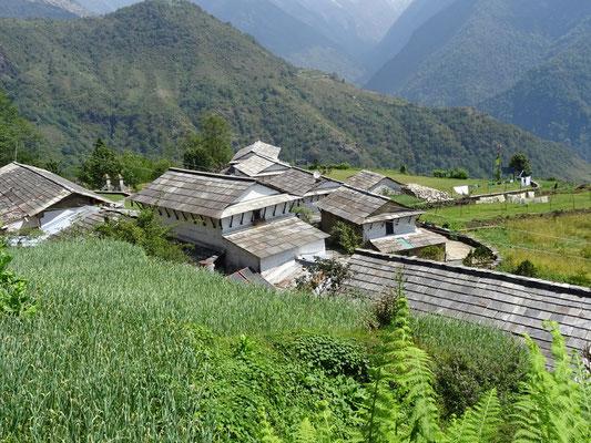 Das schöne Dorf Ghandruk...