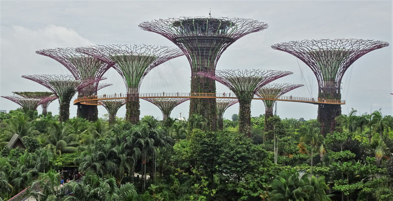 ....Gardens by the Bay....