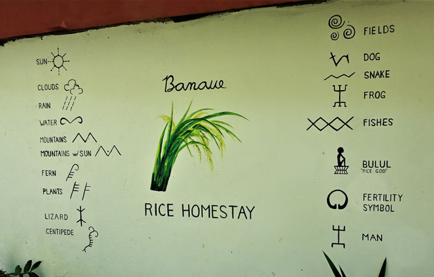 ....das Rice Homeystay.