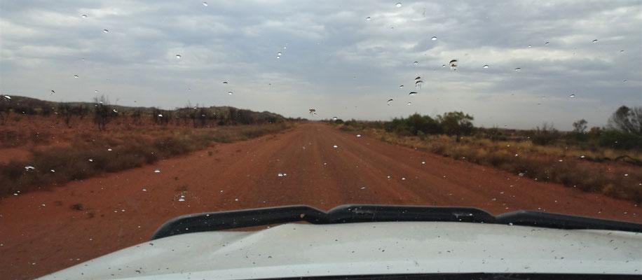 Regen im Outback und.....
