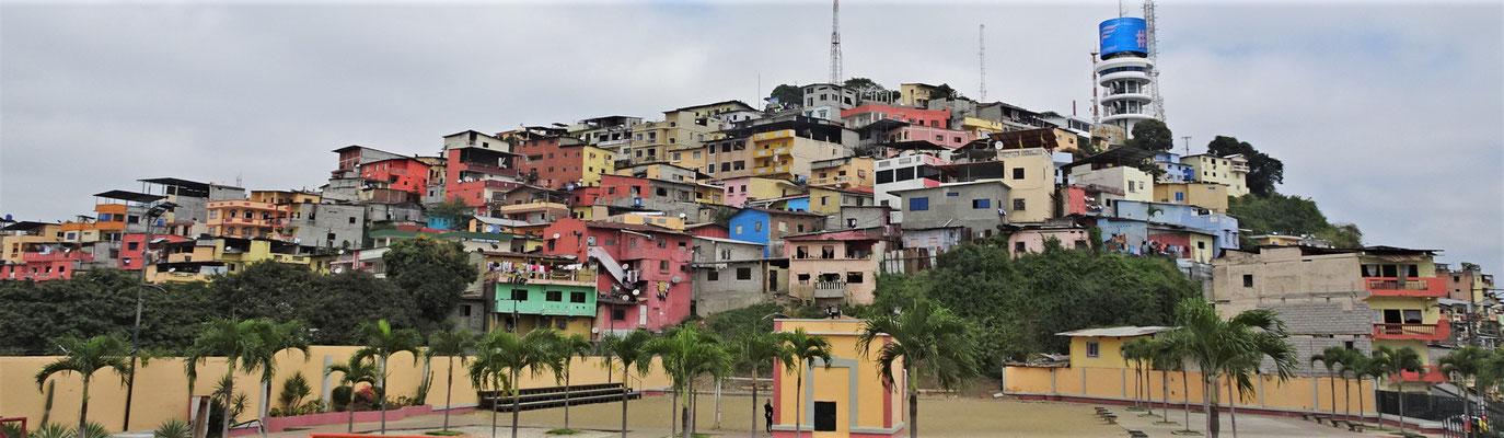 Die farbigen Häuser am Cerro Santa Ana.