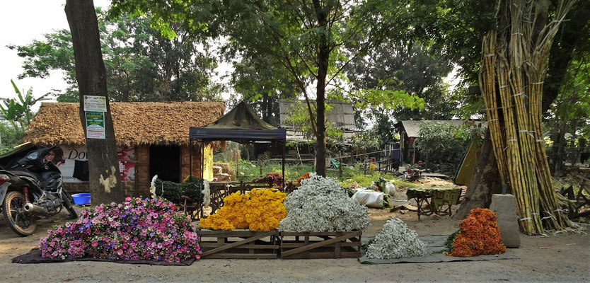 Der Blumenmarkt am.....